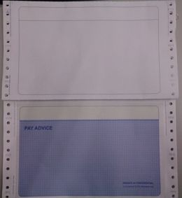 Standard Pre-Printed Mailer (PaySlip)